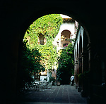 A294M4 Ivy covered walls courtyard Spanish  colonial style hotel San Miguel de Allende Mexico