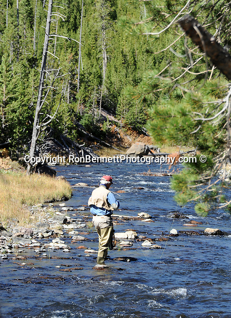 Fly fishing a yellowstone stream for Devils lake oregon fishing