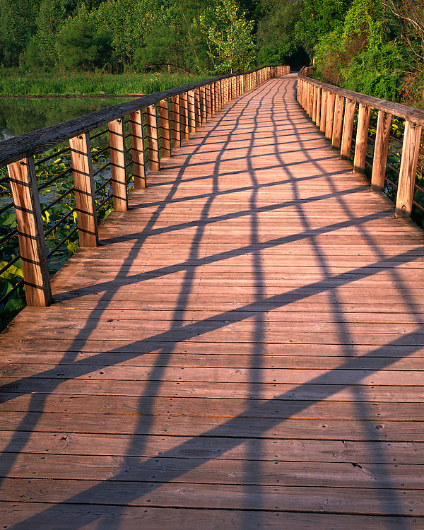 Sunrise light on the boardwalk at the Beaver Marsh; Cuyahoga Valley National Park, OH