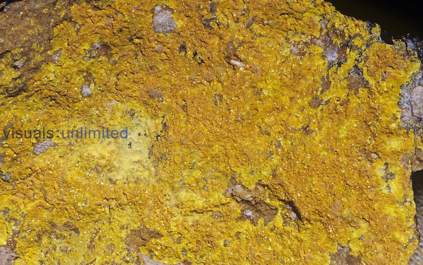 Phosphuranylite, a radioactive ore of Uranium, Australia, Saddle Ridge Mine.