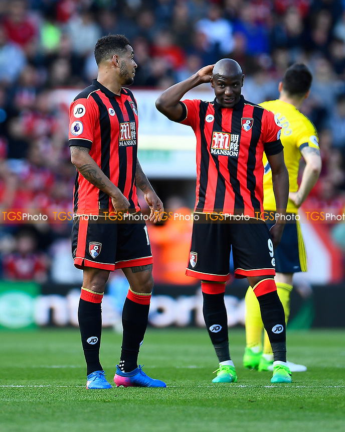 AFC Bournemouth goal scorers Joshua King left and Benik Afobe during AFC Bournemouth vs Middlesbrough, Premier League Football at the Vitality Stadium on 22nd April 2017