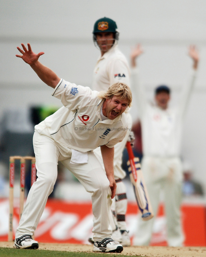 Photo: Glyn Thomas..England v Australia. nPower Test Series. The Ashes 2005..10/09/2005..England's Matthew Hoggard appeals.
