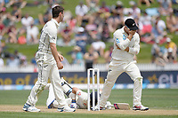 1st December 2019, Hamilton, New Zealand;  Rory Burns dives in to make his crease and the Blackcaps miss a chance. International test match cricket, New Zealand versus England at Seddon Park, Hamilton, New Zealand. Sunday 1 December 2019.