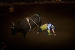 Tony Brunetti, originally of New York, works with his horse 'Brooklyn' named for his home city at his training facility in Colorado.  Brunetti is training the horse for the Extreme Mustang Makeover in which trainers have 100 days to take a horse from wild to show quality.  After nine weeks, Brunetti is working on polishing Brooklyn to perform tricks like laying down, standing on his back, and jumping through a ring of fire. Scenes from the Wyoming State Fair and PRCA Rodeo.  Carnival rides, parade, rodeo.