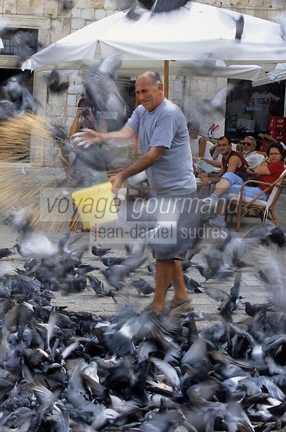 Europe/Croatie/Dalmatie/Dubrovnik: Homme nourrisant les  pigeons