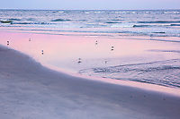 Pastel reflections on the shoreline.