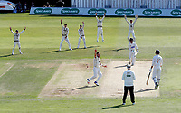 Matt Henry appeals for Kent during the Specsavers County Championship division two game between Kent and Glamorgan at the St Lawrence Ground, Canterbury, on Sept 18, 2018