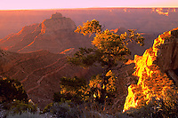 Sunrise on the North Rim of the Grand Canyon Kaibab National Forest . Arizona, Kaibab National Forest Grand Canyon National Park North Rim.