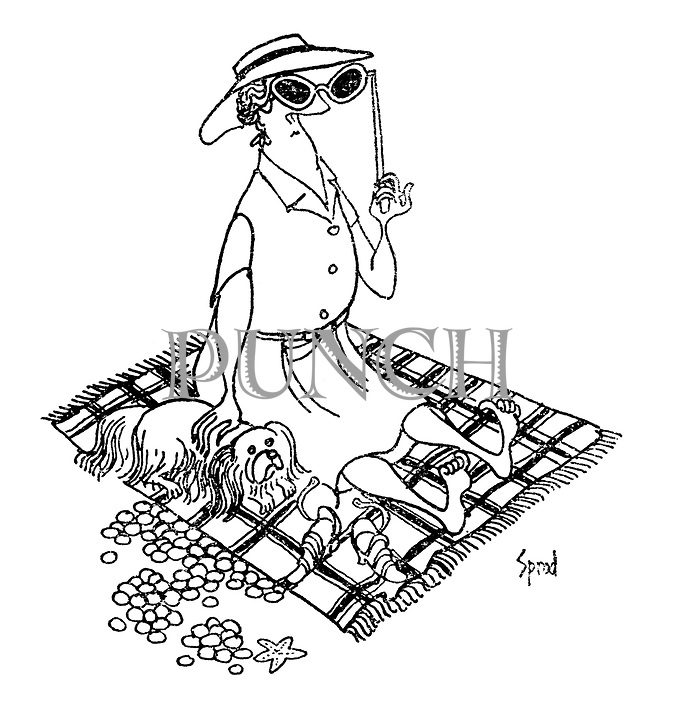 (A well-to-do woman wearing lorgnette sunglasses sunbathes on a beach with her pet Pekinese)