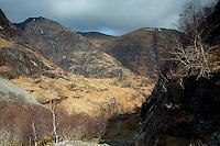 The Aonach Eagach from Coire Gabhail, the Lost Valley, Glencoe, Lochaber