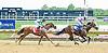 Harbor Fox winning at Delware Park on 7/30/12