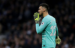 Tottenham's goalkeeper Paulo Gazzaniga during the Premier League match at the Tottenham Hotspur Stadium, London. Picture date: 7th December 2019. Picture credit should read: Paul Terry/Sportimage