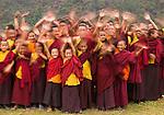 Young monastary students take a break, Paro Valley, Bhutan