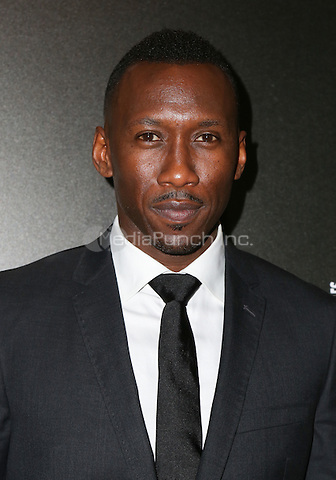 LOS ANGELES, CA - NOVEMBER 06: Mahershala Ali arrives at the 9th Hamilton Behind The Camera Awards at Exchange LA on November 6, 2016 in Los Angeles, California. (Credit: Parisa Afsahi/MediaPunch).