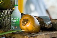 Coconuts for sale at Cane Garden Bay Beach<br /> Tortola<br /> British Virgin Islands