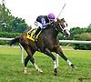 Yankee Wildcat winning at Delaware Park on 9/3/16