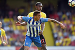 Anthony Knockaert of Brighton & Hove Albion is challenged by Christian Kabasele of Watford during the premier league match at the Vicarage Road Stadium, Watford. Picture date 26th August 2017. Picture credit should read: Robin Parker/Sportimage