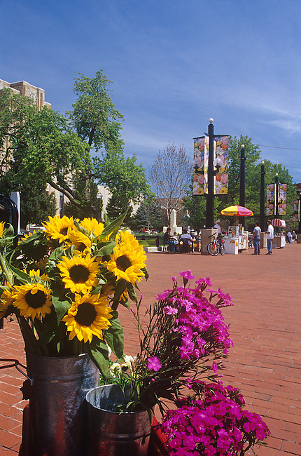 Flowers, Pearl Street Mall, Boulder, Colorado