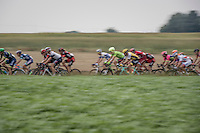 peloton speeding along<br /> <br /> 12th Eneco Tour 2016 (UCI World Tour)<br /> stage 4: Aalter - St-Pieters-Leeuw (202km)