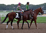 Chief's Crown, Angel Cordero, Jr. up - Belmont Park
