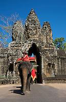 Elephant near Bayon Temple, Siem reap, Cambodia