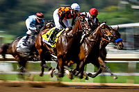 ARCADIA, CA - SEPTEMBER 30: Paradise Woods #4, ridden by Flavien Pratdrives to the lead in the Zenyatta Stakes at Santa Anita Park on September 30, 2017 in Arcadia, California. (Photo by Alex Evers/Eclipse Sportswire/Getty Images)