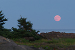 The full Buck Moon rises over Lobster Cove on Monhegan Island, Maine