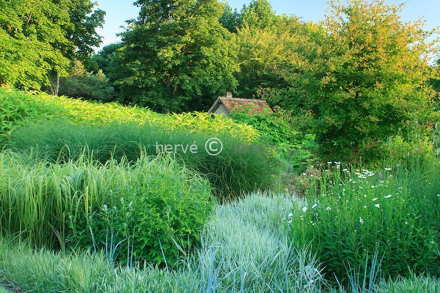 Jardins du pays d'Auge (mention obligatoire dans la légende ou le crédit photo):.grand massif de graminées autour du bassin.