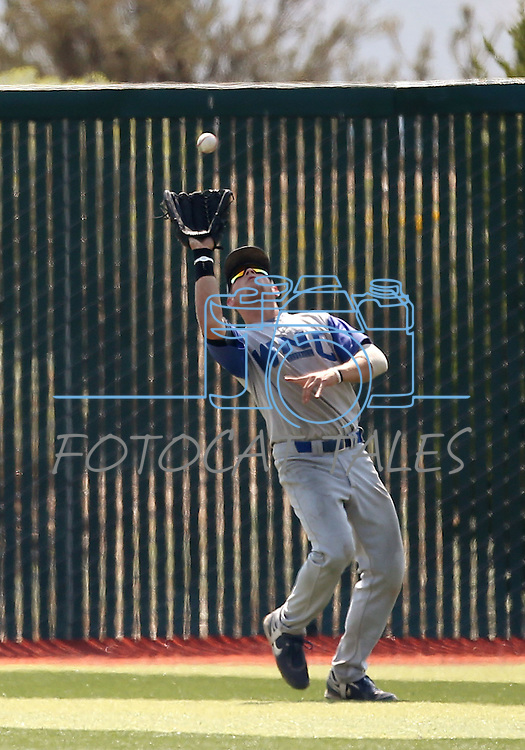 Wildcat Alex Fife makes a catch in right field during the alumni game at Western Nevada College in Carson City, Nev., on Saturday, Sept. 7, 2013. The Wildcats defeated the Alumni 7-1.  <br /> Photo by Cathleen Allison/Nevada Photo Source