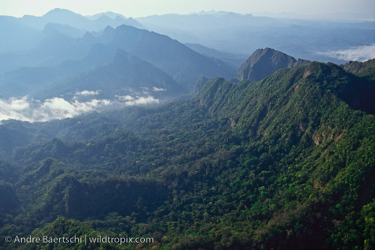 Serrania de Bala and gorge of Rio Beni (center) near border of Madidi National Park, above town of Rurrenabaque, lowland tropical rainforest, Bolivia.