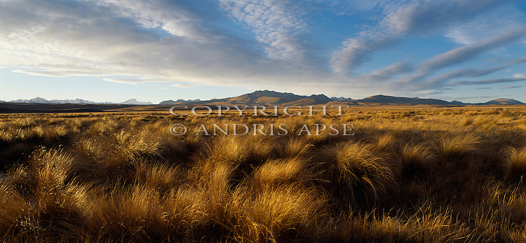 The Gammack Mountains in the Mackenzie Country. Canterbury Region. New Zealand.