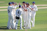 Jamie Porter of Essex celebrates taking the wicket of Tom Moores during Essex CCC vs Nottinghamshire CCC, Specsavers County Championship Division 1 Cricket at The Cloudfm County Ground on 14th May 2019