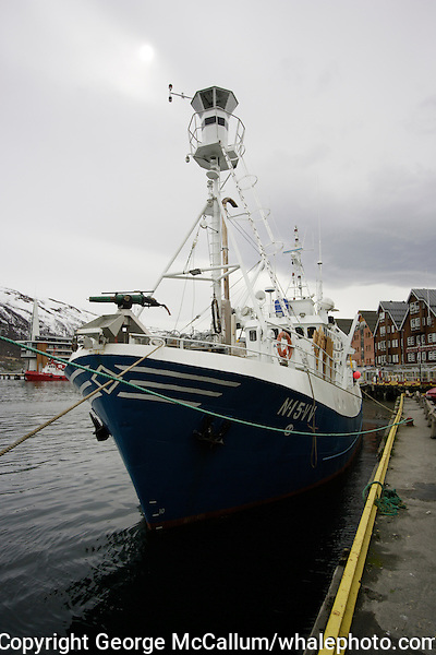 Norwegian minke whaling boat at dock in Tromso Harbour, Arctic Norway, North Atlantic