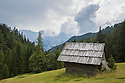 Traditional hay meadow with wooden barn in a woodland clearing. The Martuljek mountain group can be seen on the background. Julian Alps, Slovenia July.