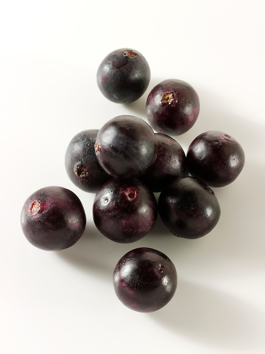 Stock photography of the acai berry the super fruit anti oxident from the Amazon. The acai berry has been associated with helping weight loss.