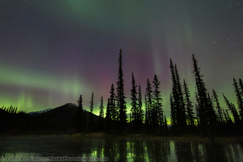 The aurora borealis reflects on the icy surface of a frozen pond in Alaska's Brooks range, arctic, Alaska