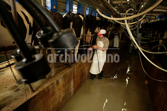 Milk production in a farm iin Monte Maiz, Cordoba Province, Argentina...Photographer Diego Giudice/Bloomberg News
