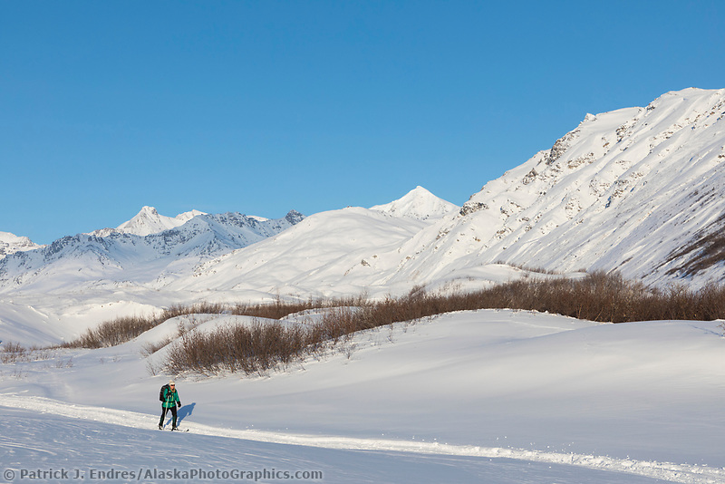 A woman skis along the Miller Creek drainage in the Alaska Range mountains, Interior, Alaska.