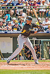 22 March 2015: Pittsburgh Pirates infielder Pedro Florimon in Spring Training action against the Houston Astros at Osceola County Stadium in Kissimmee, Florida. The Astros defeated the Pirates 14-2 in Grapefruit League play. Mandatory Credit: Ed Wolfstein Photo *** RAW (NEF) Image File Available ***