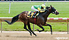 Big Brown Musket winning at Delaware Park racetrack on 6/7/14