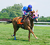 Fast Flying Fred winning at Delaware Park on 6/22/17