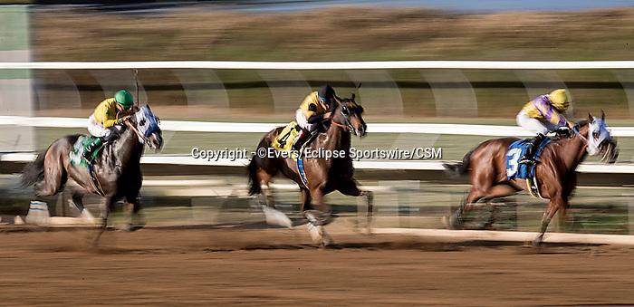 November 24, 2018:  Scenes from Del Mar on November 24, 2018 in Del Mar, California. Evers/Eclipse Sportswire/CSM