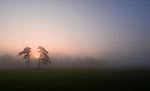 Misty Autumnal sunrise on Durdham Downs Bristol