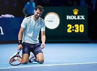 Grigor Dimitrov (BUL) celebrates after defeating David Goffin (BEL) to take the ATP World Tour Title, Nitto ATP World Tour Singles Final, O2 Arena, London United Kingdom, 19th November 2017