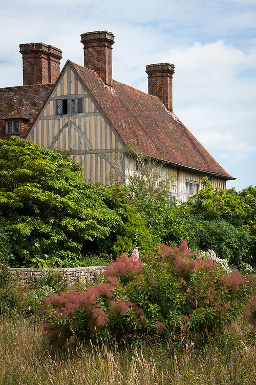 View from the Upper Moat, Great Dixter, mid July. Cotinus coggygria (Smoke bush) in the foreground.