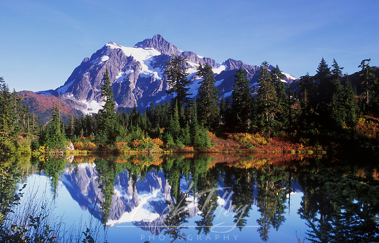 N.A., USA, Washington, Mt. Baker & Snoqualmie NF, Mt. Shuksan Reflected in Picture Lake
