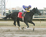 Parx Racing Win Photos_01-2014