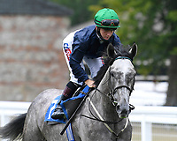 Kepala ridden by Hollie Doyle goes down to the start of  The British Stallion Studs EBF Odstock Fillies' Handicap during Horse Racing at Salisbury Racecourse on 13th August 2020