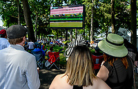 ELMONT, NY - JUNE 09: Fans watch a race in the Backyard area on Belmont Stakes Day at Belmont Park on June 9, 2018 in Elmont, New York. (Photo by Eric Patterson/Eclipse Sportswire/Getty Images)