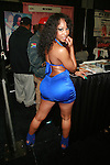 Adult Film Actress Roxy Reynolds Attends 2011 EXXXOTICA Expo Held at the New Jersey Convention and Exposition Center,   11/5/11